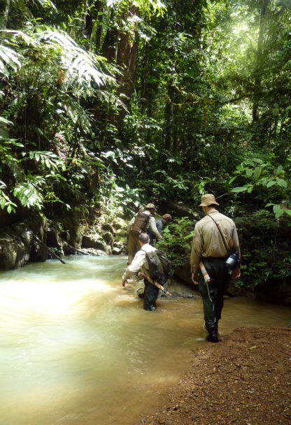 jungle_training_trekking