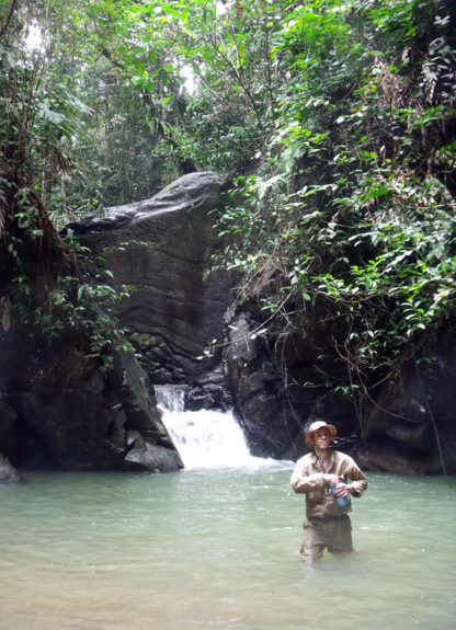 jungle_training_waterfall